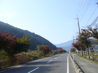 2009118_001